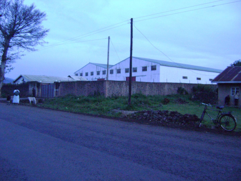 Diary Factory in Kisoro